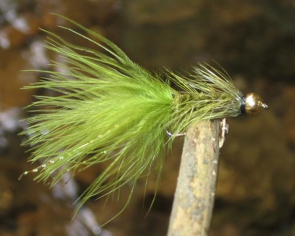 Goldkopf Woolly Bugger Olive
